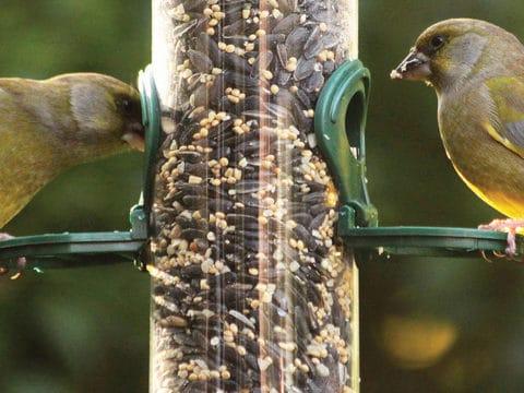 birdfeeders bird house birdseed food accessories