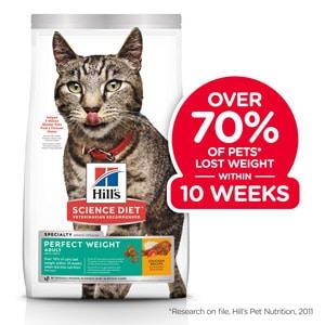 feline weight management