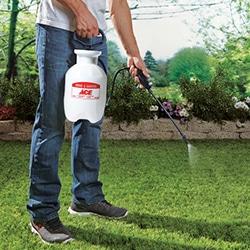 lawn garden hose backpack handheld tank sprayer