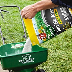 lawn grass seed fertilizer
